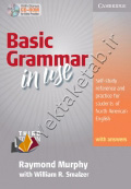 Basic Grammar In Use Third Edition