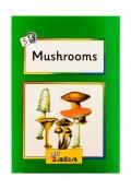Jolly Readers Mushrooms