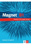 Magnet B1